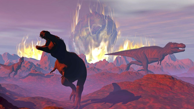 Foto: Este evento de destrucción masiva no acabó con los dinosaurios, al contrario. Foto:iStock
