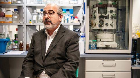 Crisálidas de insectos para fabricar las vacunas del futuro