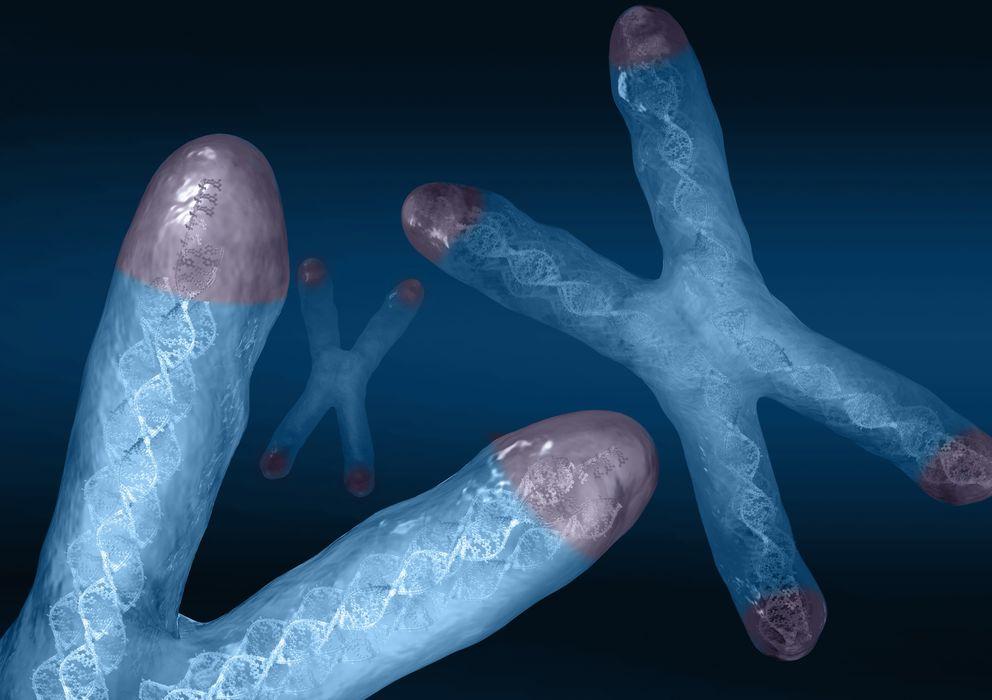 Foto: Recreación de los telómeros, los extremos del ADN. (Corbis)