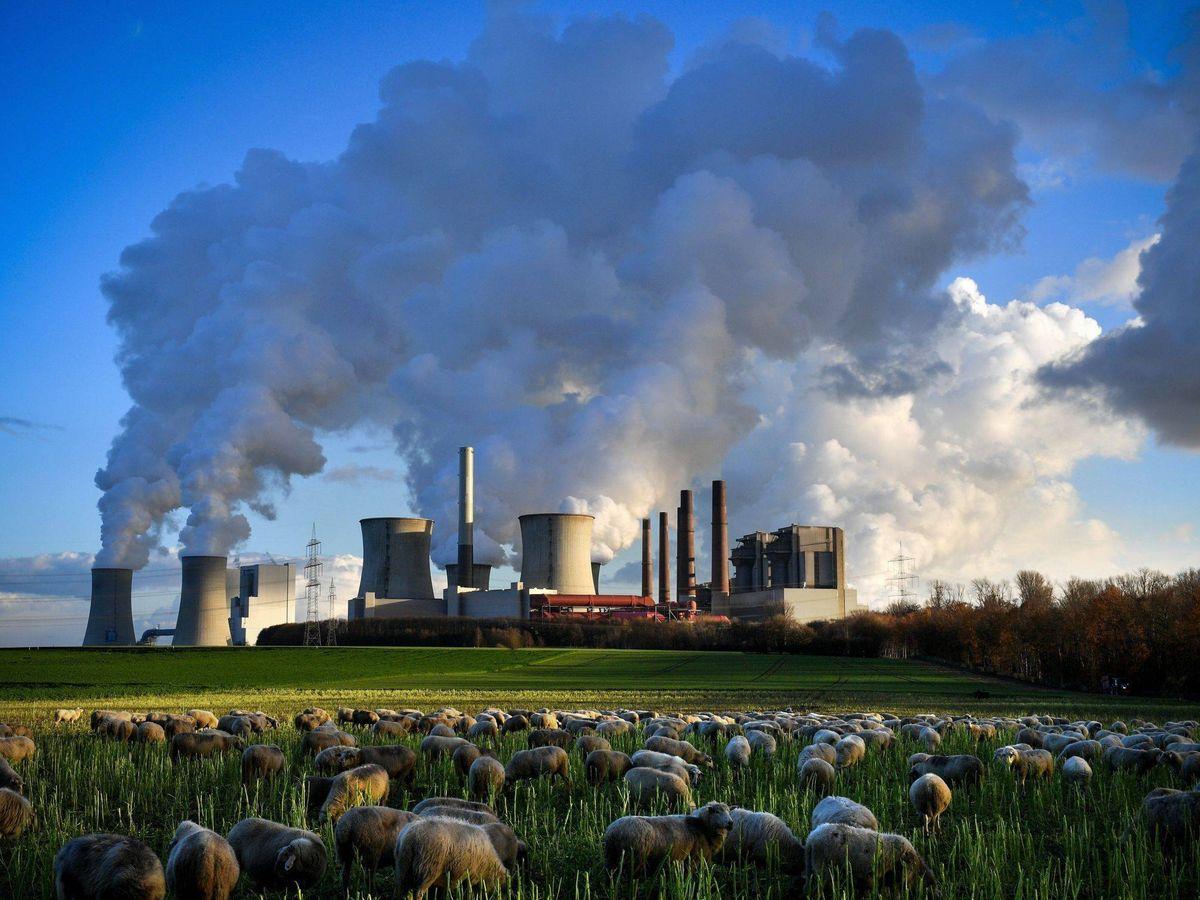 Foto: Varias columnas de humo se desprenden de la planta de Neurath en Bergheim (Alemania), el 4 de diciembre del 2018. (EFE)
