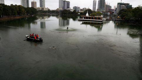 El agua contaminada en un lago de Sri Lanka