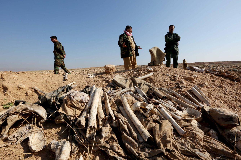 Foto: Restos de yazidíes ejecutados por el ISIS en una fosa común en las afueras de Sinjar, el 30 de noviembre de 2015 (Reuters).