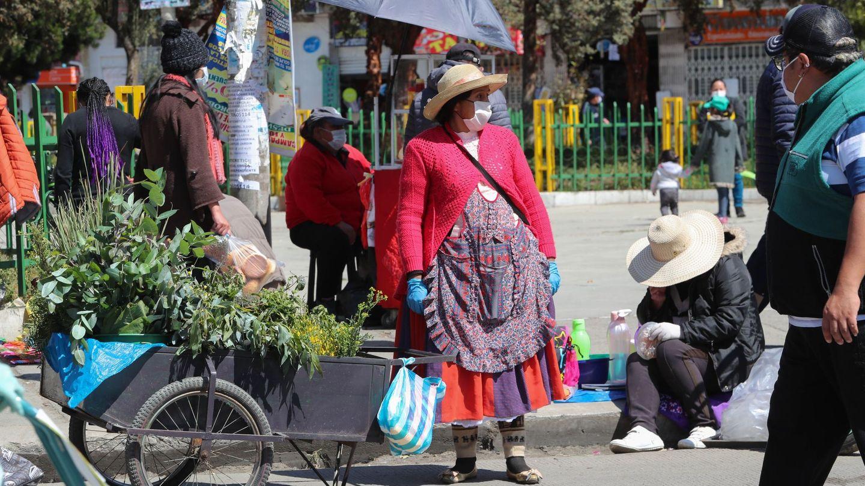 Una mujer vende plantas medicinales en un mercado de la ciudad boliviana de El Alto. (EFE)