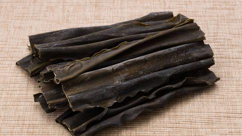 Usos del alga kombu: básica para muchos, desconocida para otros