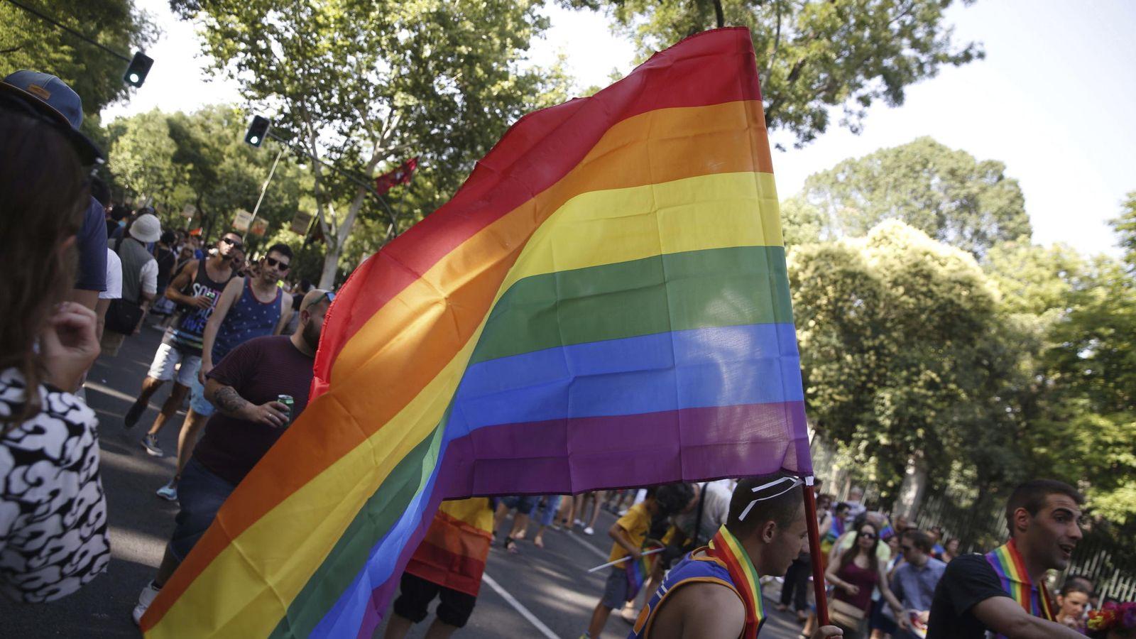 Foto: Un participante porta la bandera del orgullo gay en el recorrido por las calles de Madrid con el lema 'Leyes por la igualdad real ¡ya!'. (EFE)