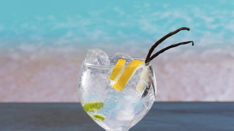 El gin-tonic perfecto para el verano: los secretos para prepararlo en casa