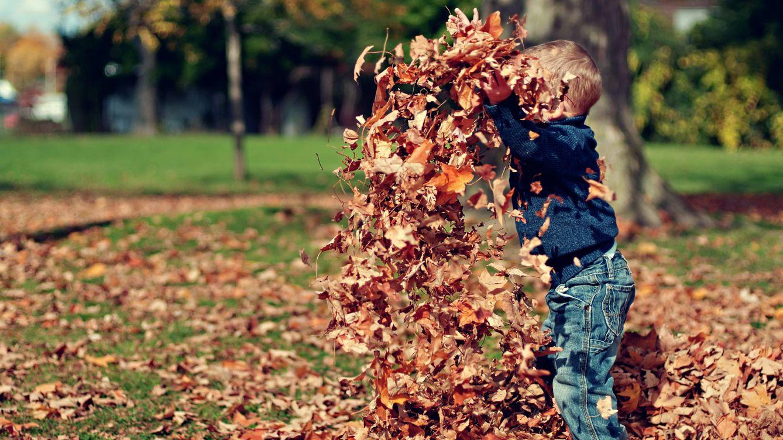 Tres planes gratis de otoño para una escapada al aire libre con tus hijos
