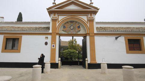 Así es el palacio sevillano de Dueñas que abre sus puertas al público