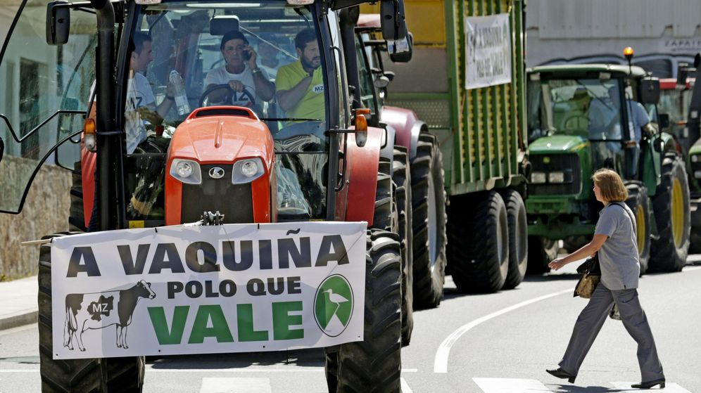 Foto: El sector lácteo prosigue sus protestas. (EFE)