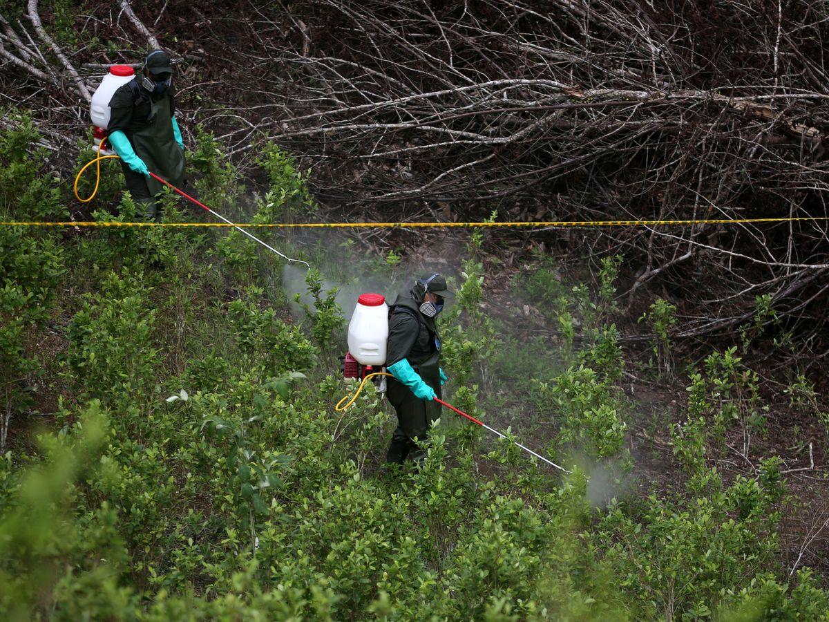 Foto: Herbicidas