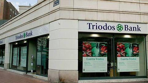 Triodos Bank nombra a Jeroen Rijpkema nuevo CEO en sustitución de Blom