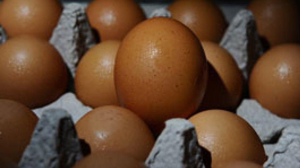 Un brote de salmonela obliga a EEUU a retirar del mercado 380 millones de huevos