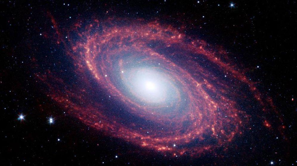 Foto: Harvard defiende la existencia de vida extraterrestre: esta es la gran razón. (EFE)
