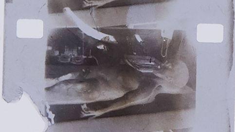 Subastan un fotograma del vídeo de la autopsia a un supuesto extraterrestre
