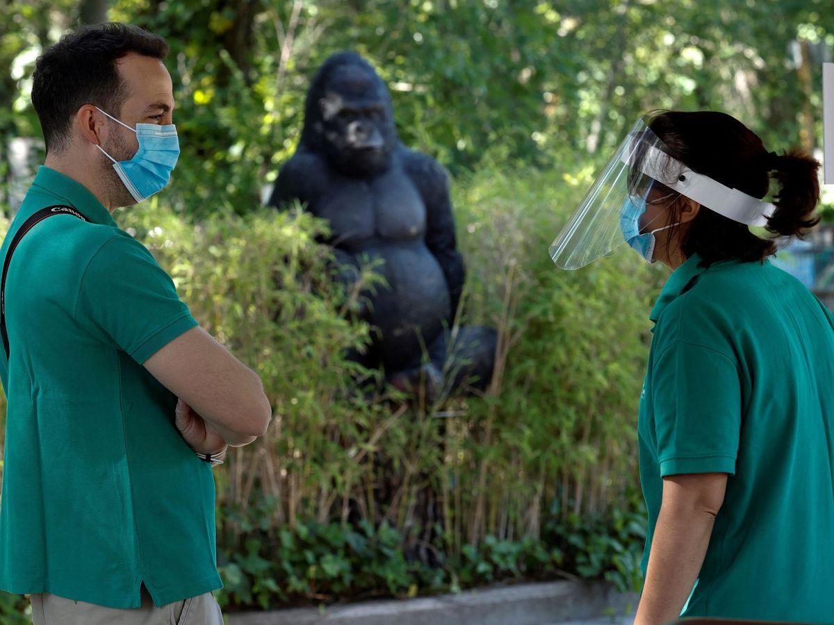 Foto: Dos empleados conversan ante la instalación de los gorilas en el Zoo de Madrid, este lunes. (EFE)