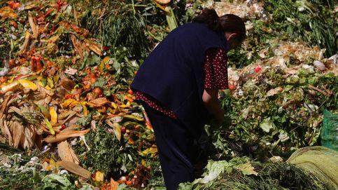 La insostenible (e inmoral) lacra del desperdicio de alimentos