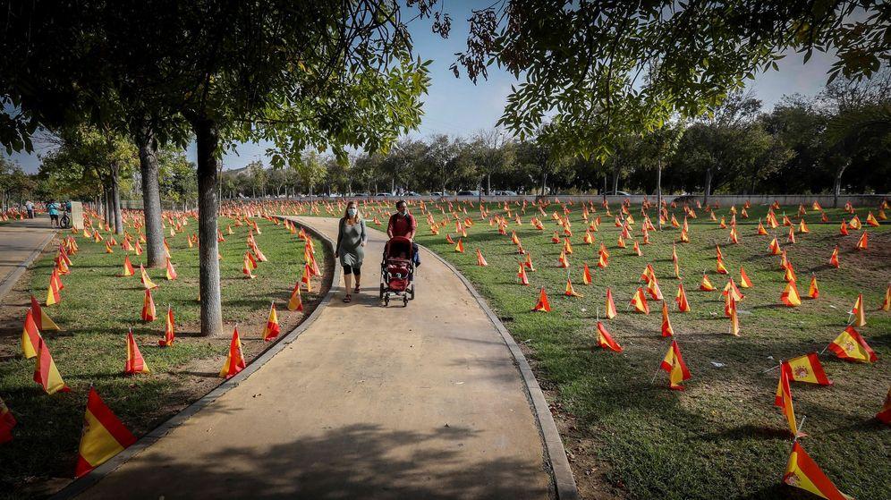 Foto: Parte de las 53.000 banderas colocadas por la Asociación Nacional de Víctimas y Afectados por Coronavirus (Anvac) junto al Guadalquivir, a su paso por Sevilla. (EFE)