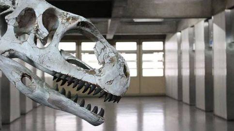 Nuevos hallazgos revelan cuál es el dinosaurio más antiguo del planeta