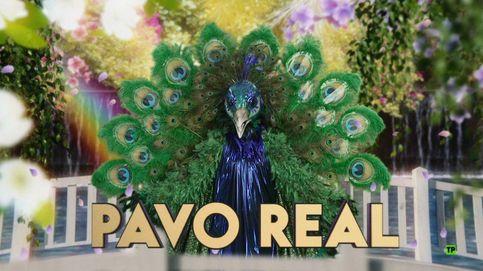 ¿Quién es el Pavo real de 'Mask Singer'? Todas las pistas apuntan a esta cantante