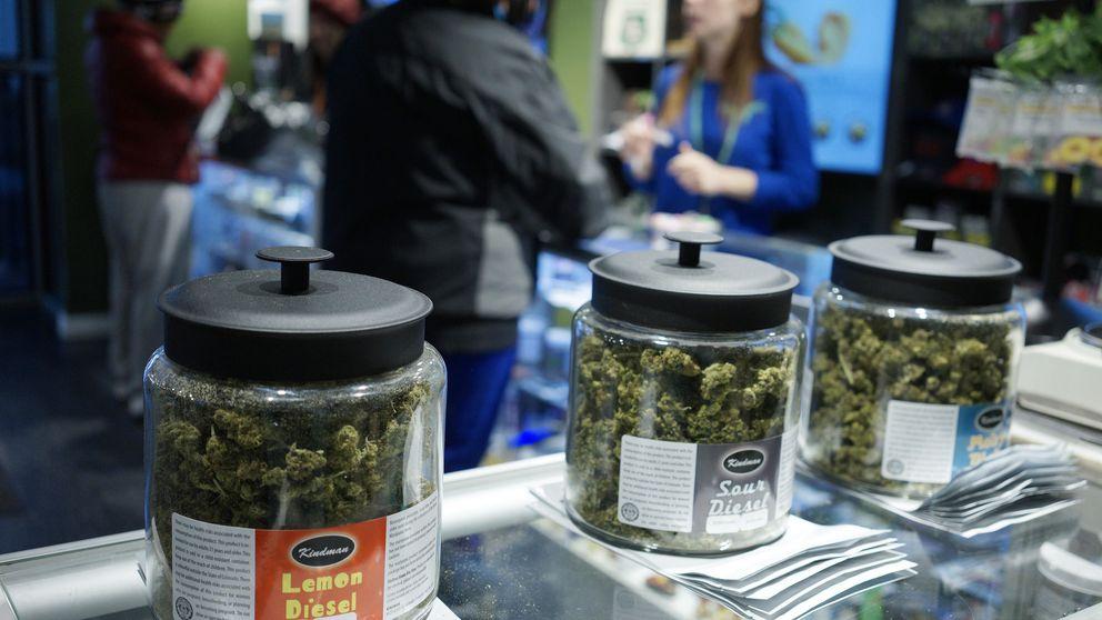 Los narcos ganan millones con la legalización de la marihuana en Colorado