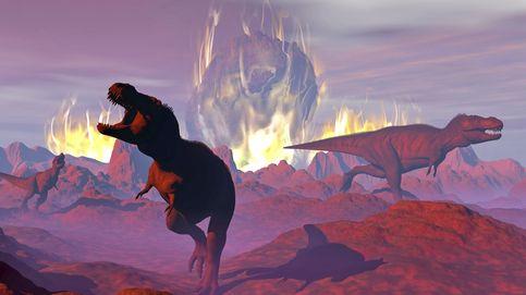 Descubren un nuevo evento de extinción masiva que benefició a los dinosaurios