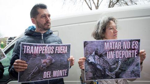 Cazadores, ganaderos y cuatro CCAA ganan el conflicto por la protección del lobo