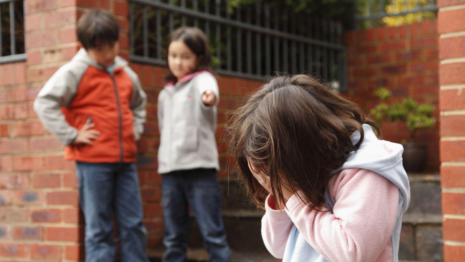 Foto: ¿Resolvería una cámara de videovigilancia el acoso escolar en los colegios? (iStock)