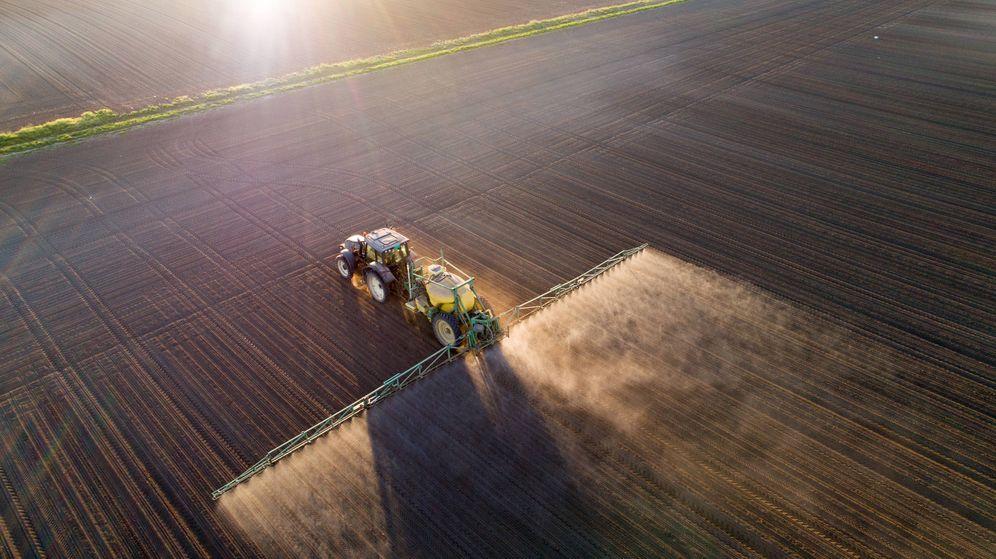 Foto: Arado, cultivado y fumigado mil veces, y las que quedan. (iStock)