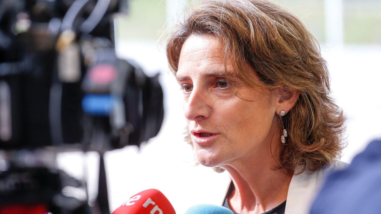 La nueva ministra española de Transición Ecológica, Teresa Ribera. (EFE)