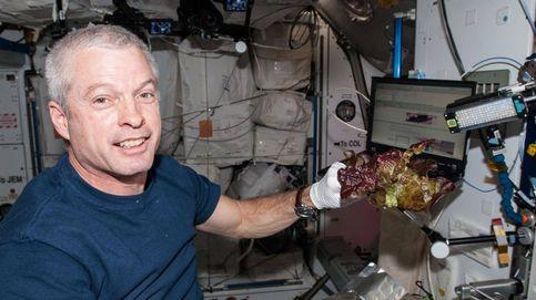 La lechuga espacial es más nutritiva que la terrestre