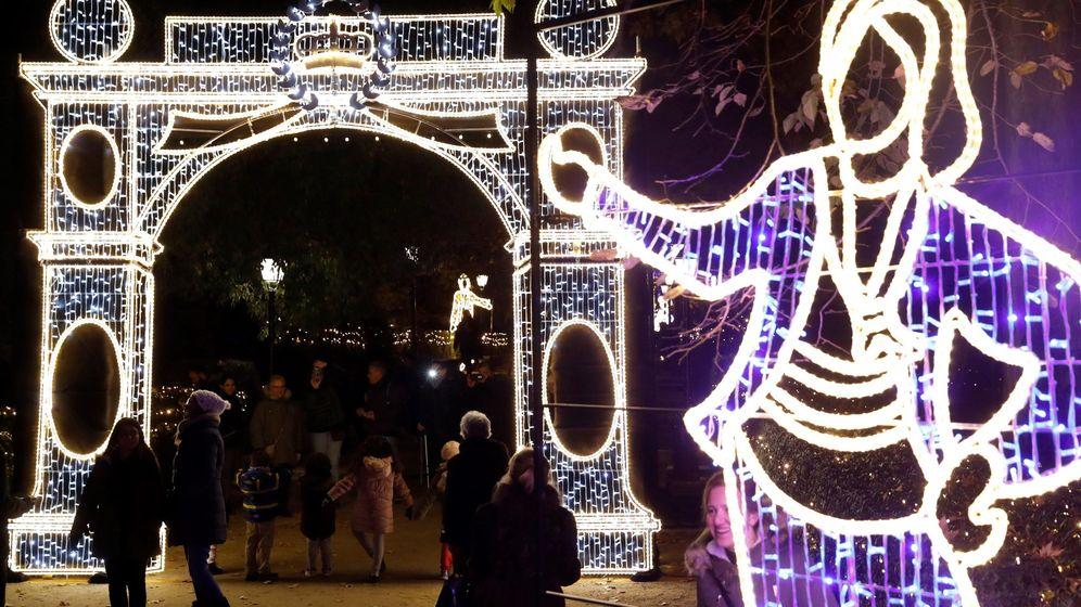 Foto: Espectáculo de luces en el Jardín Botánico. (EFE)
