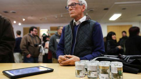 Hacer dinero en pleno 'boom' de la marihuana