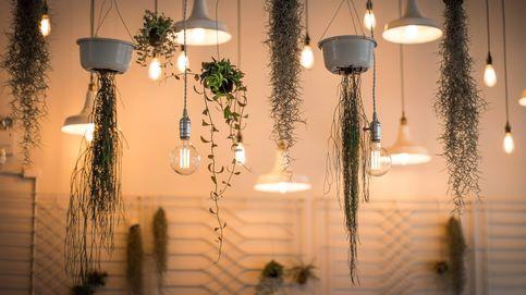 6 lámparas increíbles que además de iluminar van a decorar tu casa