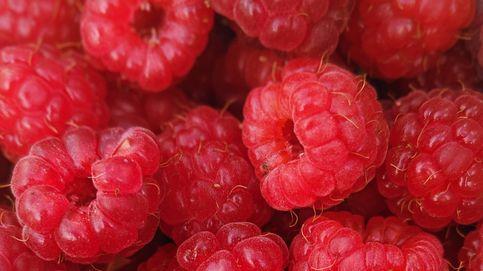 Demuestran que estos 5 alimentos sí bajan el azúcar en sangre