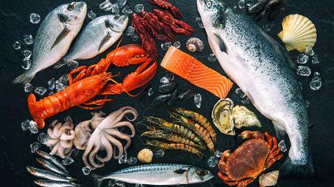 Los científicos apuestan por el marisco como el alimento del futuro