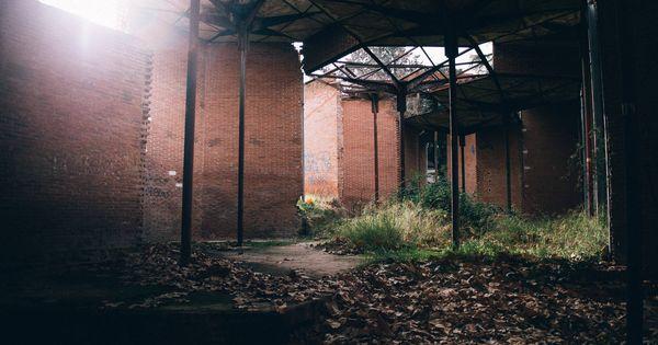 De edificio de prestigio a refugio para gatos la ruina - Pabellon casa de campo madrid ...