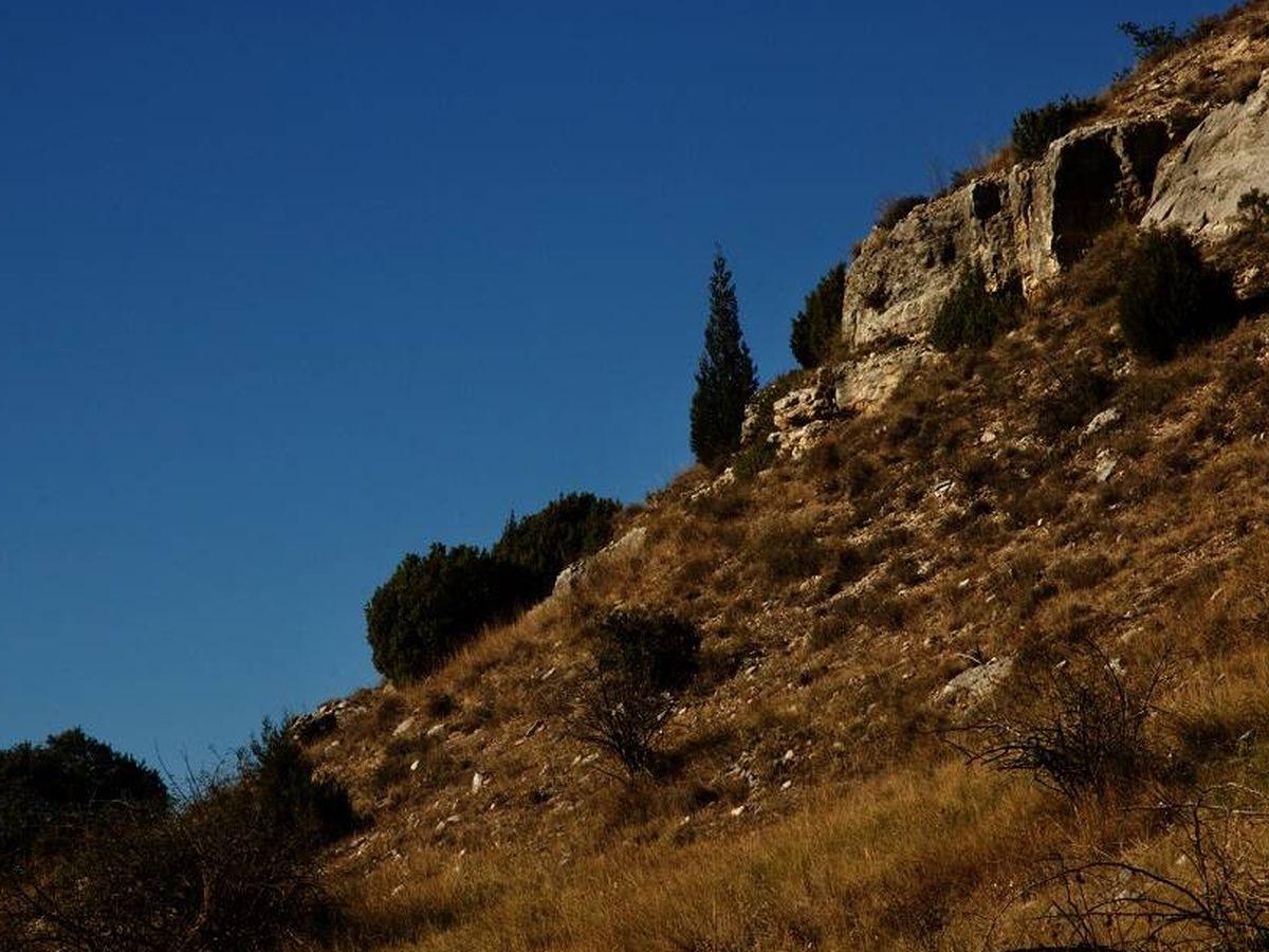 Foto: La sequedad característica del campo español en agosto. (Carlos de Hita)