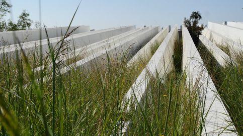 La última factura de Calatrava: 13 millones tirados en un solar de Valencia
