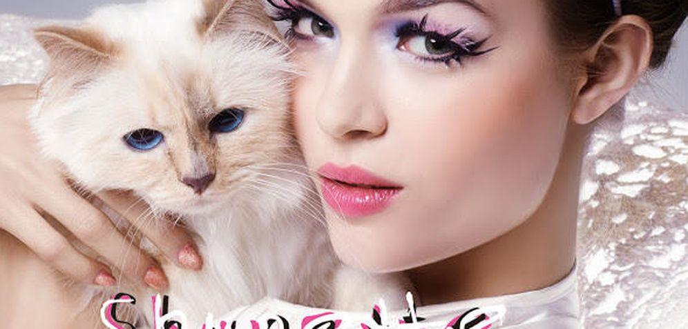 Foto: El gato de Karl Lagerfeld gana lo mismo que Cara Delevingne con tan solo dos contratos