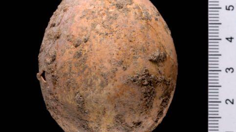 Encuentran un huevo de gallina de 1.000 años de antigüedad casi intacto