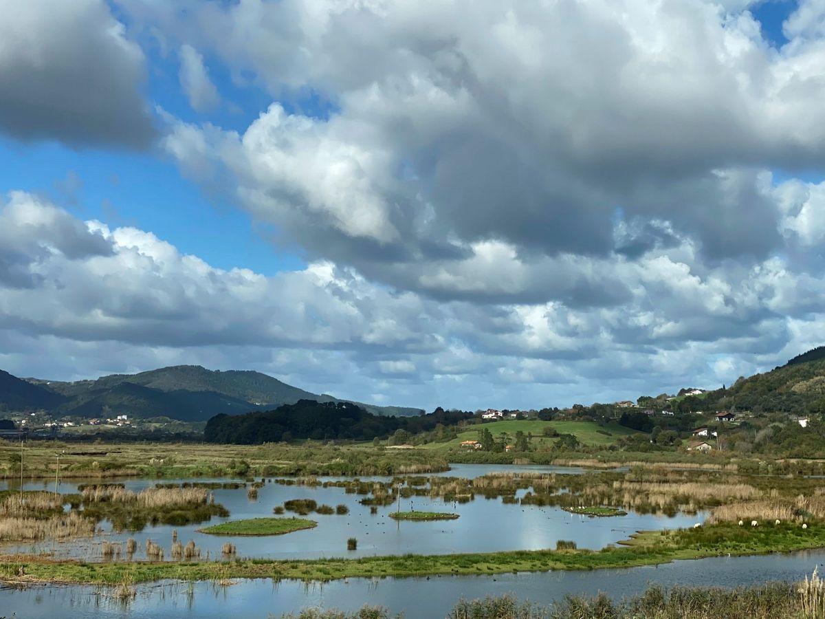 Foto: Reserva de la Biosfera de Urdaibai, en Vizcaya. (EFE)