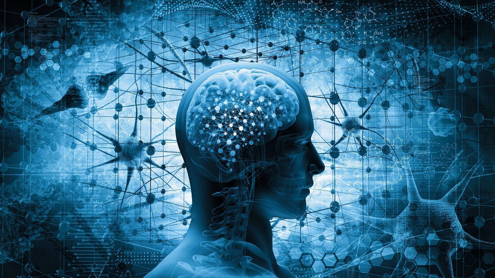El cerebro procesa la letra y la música de una canción en dos lados diferentes