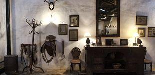 Post de De ruta por la dehesa salmantina: un viaje al hogar del toro bravo