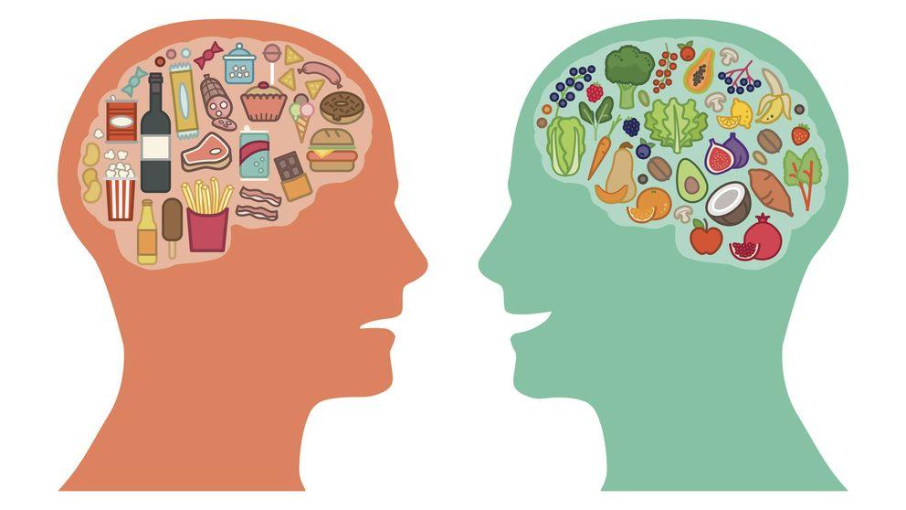 Desvelan cómo los genes del cerebro cambian con los alimentos que se comen