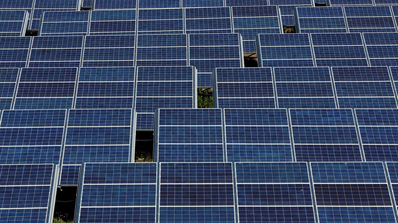 Everwood Capital levanta 300 millones para fotovoltaico junto a Fernández-Cuesta