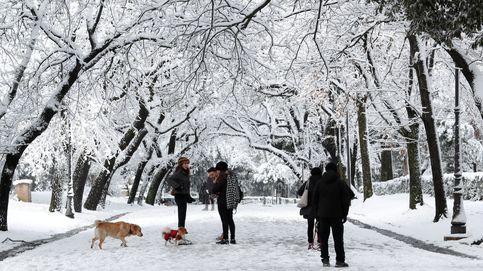 La ciudad en la que nunca nieva se tiñe de blanco