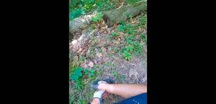 Post de Un ciclista es mordido por una serpiente venenosa y graba su reacción en directo