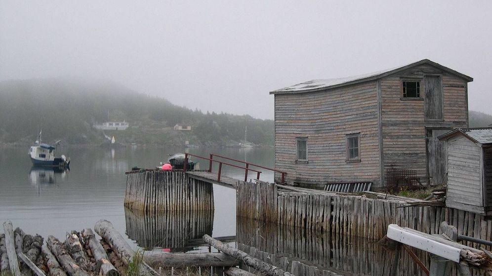 Foto: El embarcadero de Little Bay, hasta donde llegará el ferry hasta el 31 de diciembre. (CC/Wikimedia Commons)