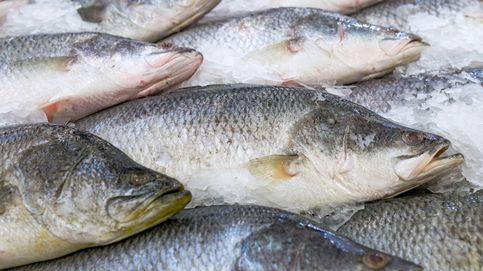 Si estás embarazada, estos pescados son los que menos te convienen