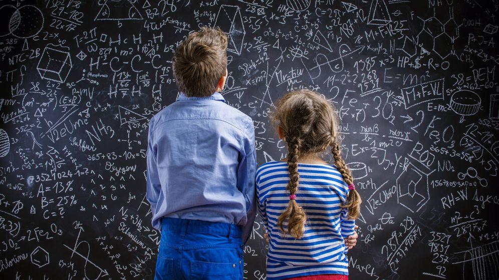 Foto: Los más listos de todos. (iStock)